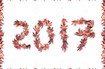 Como Fazer desse ANO o Melhor Ano da Sua Vida
